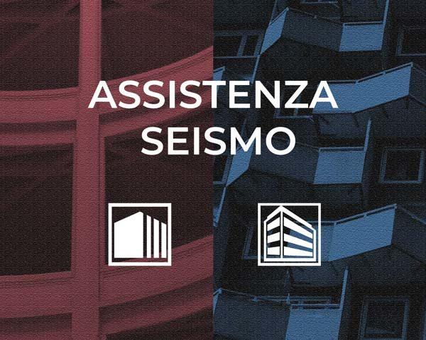 Assistenza-Seismo-Mosayk-srl